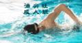 成人游泳班--油尖旺區,在九龍公園游泳池舉行