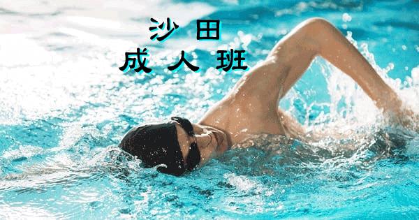 成人游泳班--沙田區,沙田賽馬會游泳池舉行