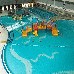 斧山道游泳池室內環境,卓越游泳會游泳班上課地點。