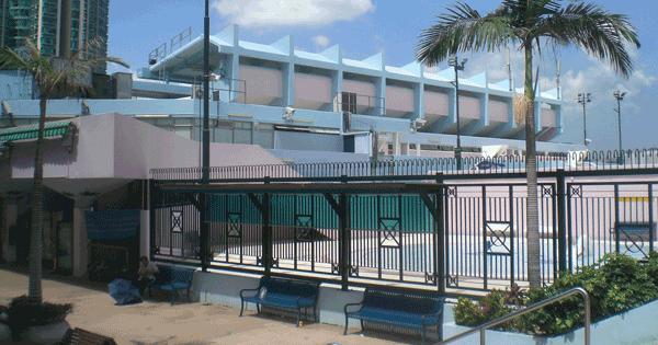 大環山游泳池,卓越游泳會游泳班上課時的地點